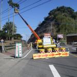 国道220号ワシントニアパーム葉落下防止ベルト設置工事